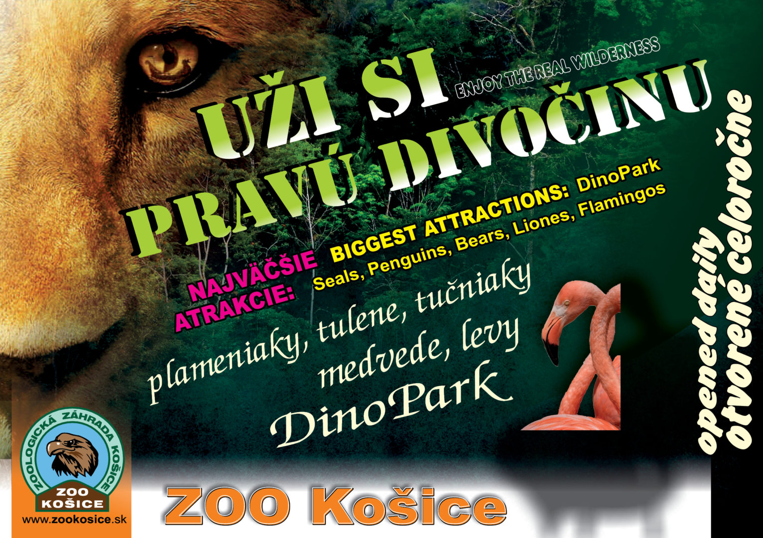 inzercia-ZOO-146×210